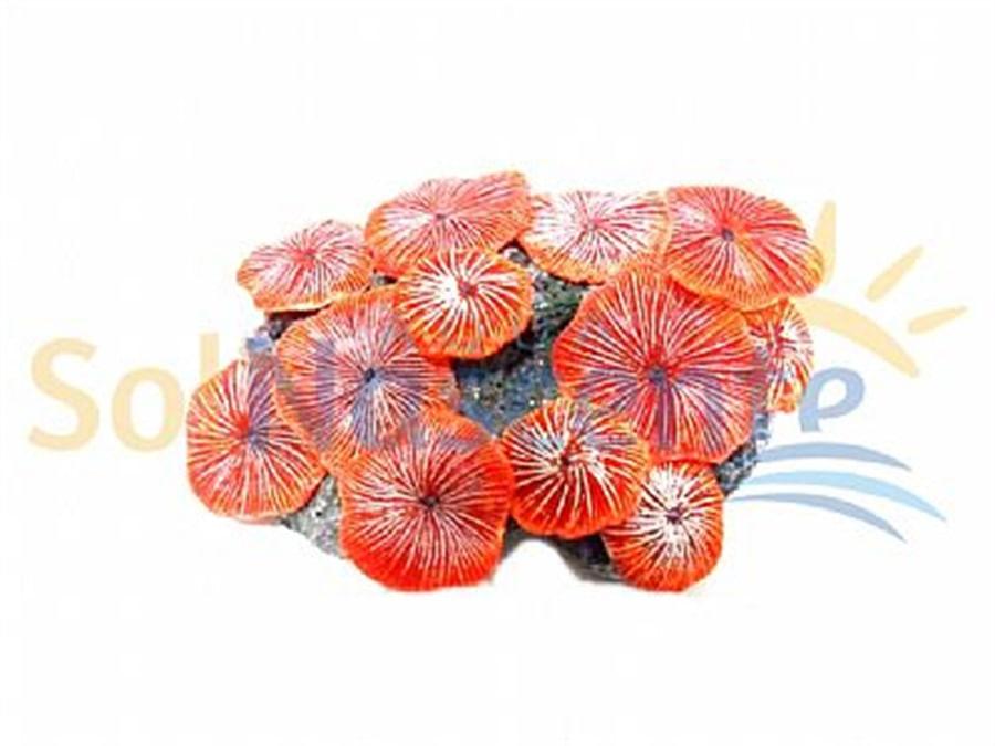 Artificial Coral Reef Ricordea Red 4 (11x7,5x3,5cm)