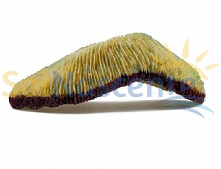 Artificial Coral Reef Tong Amarelo
