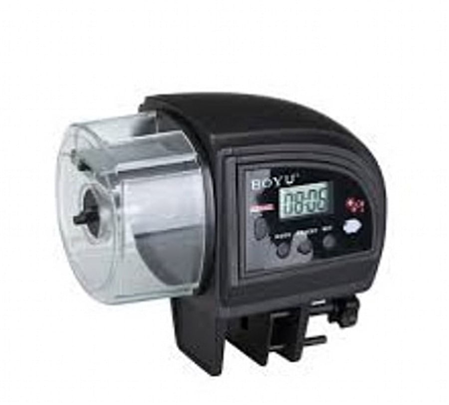 Boyu Alimentador Automático Digital a Pilha ZW-66