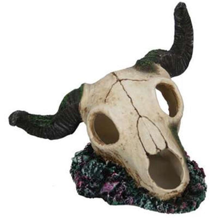 craft work cranio de touro ch-4612