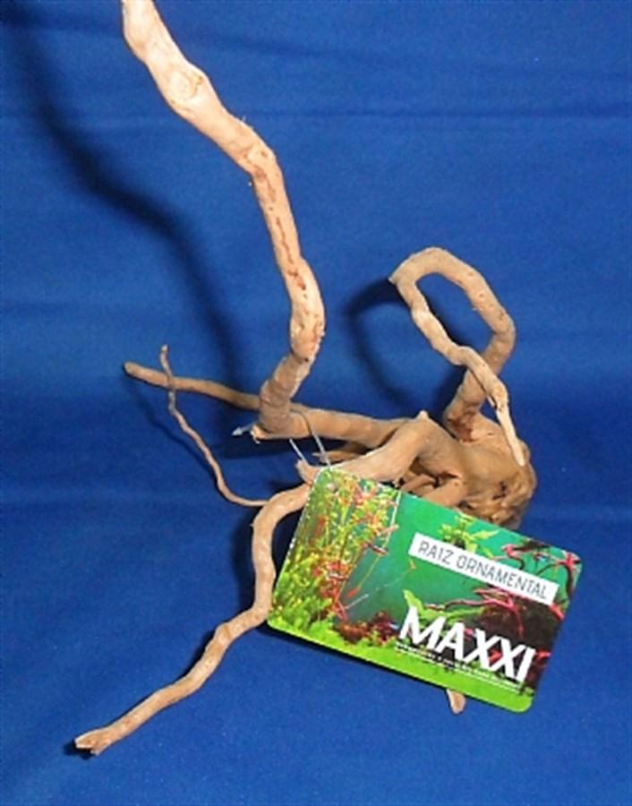Maxxi Raiz Ornamental (SS) 20cm x 30cm (imagem meramente ilustrativa)