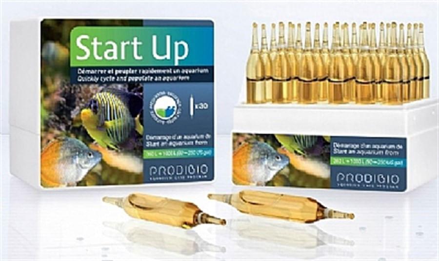 Prodibio - Start Up 1 Ampola