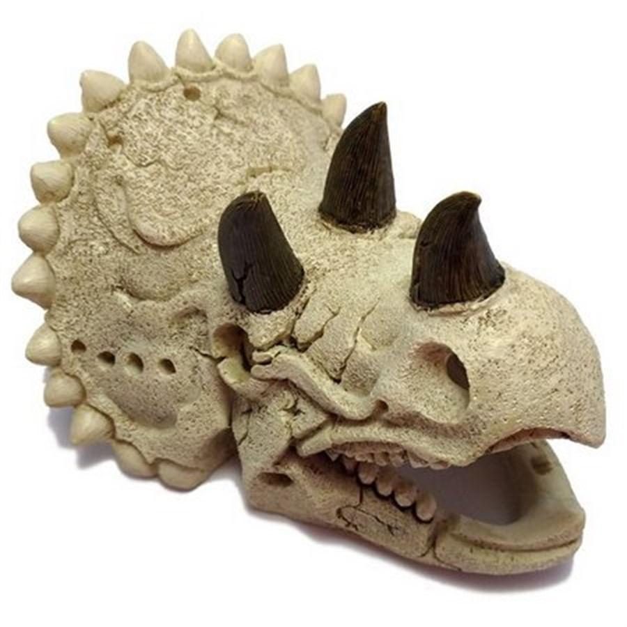 Soma Enfeite de Resina Esqueleto Cabeça Tricerratops