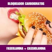 FASEOLAMINA E CASSIOLAMINA - BLOQUEADOR DE CARBOIDRATOS
