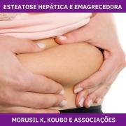FÓRMULA PARA ESTEATOSE HEPÁTICA E EMAGRECEDORA