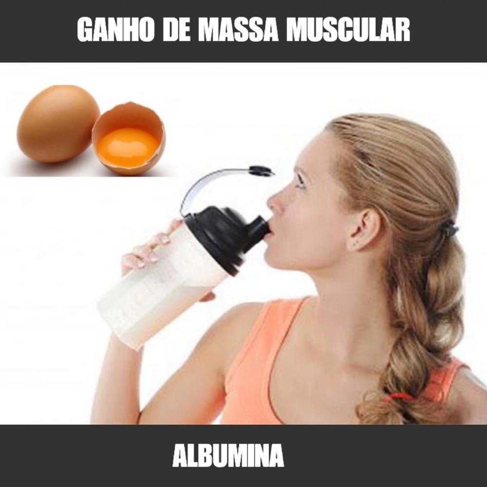 ALBUMINA - PÓS TREINO