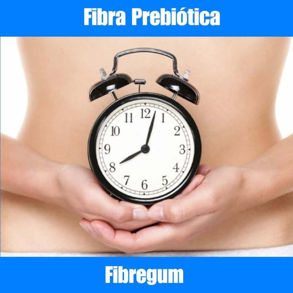 FIBREGUM - FIBRA PREBIÓTICA