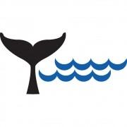 Adesivo para Banheiro Cauda de Baleia