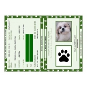 Carteira de Identidade RG PET - Kit 5 unidades