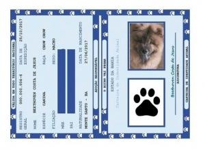 Rg Pet - Carteira De Identidade Para Pets