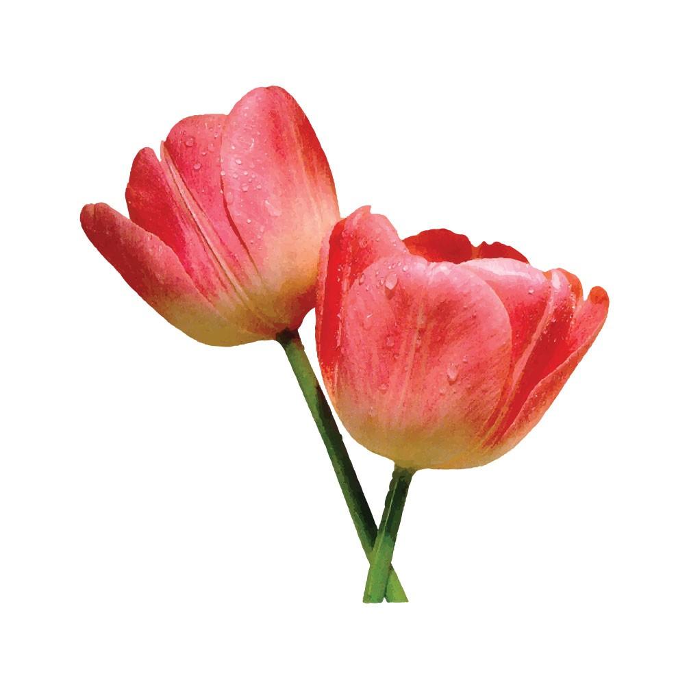Adesivo de Parede Flores 2 Interruptor