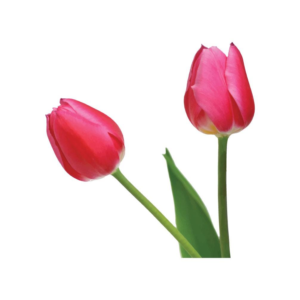 Adesivo de Parede Flores Interruptor