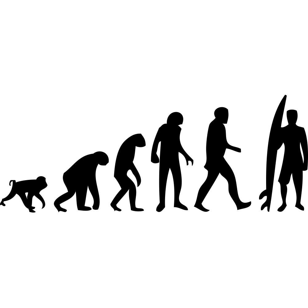 Adesivo de Parede Surf Evolution