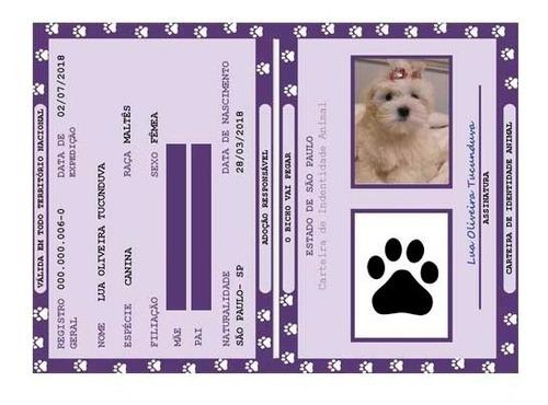 Documento Rg Identidade Pet Cachorro Gato Arquivo Digital