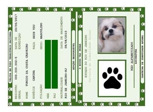 Kit Rg Pet - Carteira De Identidade Para Pets (4 Unidades)