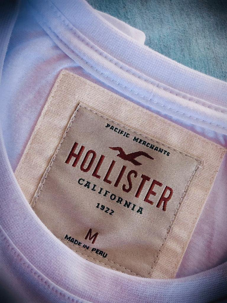 Camiseta Masculina Hollister Bordada Premium (cada)