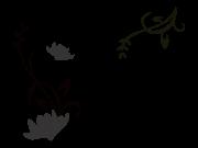 Adesivo Alto Relevo Floral - Preto - 100x60