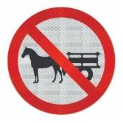 Placa Proibido Trânsito Veículos De Tração Animal R-11 Grau Técnico Comercial - 50x50cm