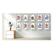 Quadro Decorativo Flores Kit De 10 Quadros 30x20cm