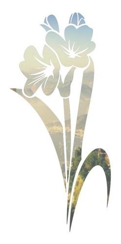 Adesivo Parede Em Alto Relevo - Flor Tulipa 40x85cm - Prata