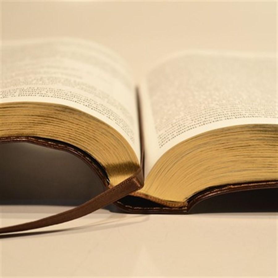 BÍBLIA JUDAICA COMPLETA LUXO (CAPA EM COURO) Preço por unidade