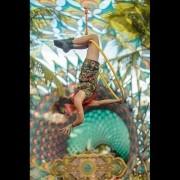 Lira - Aerial Hoop - Lyra