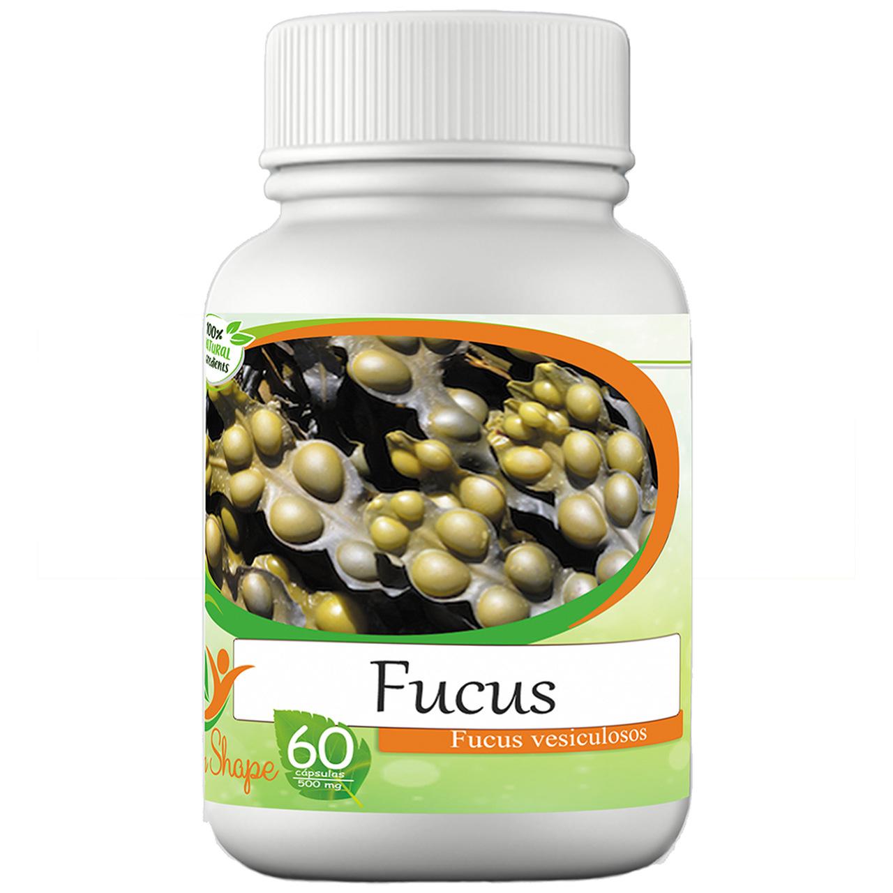 3 frascos de Fucus Vesiculosos 60 cápsulas cada frasco