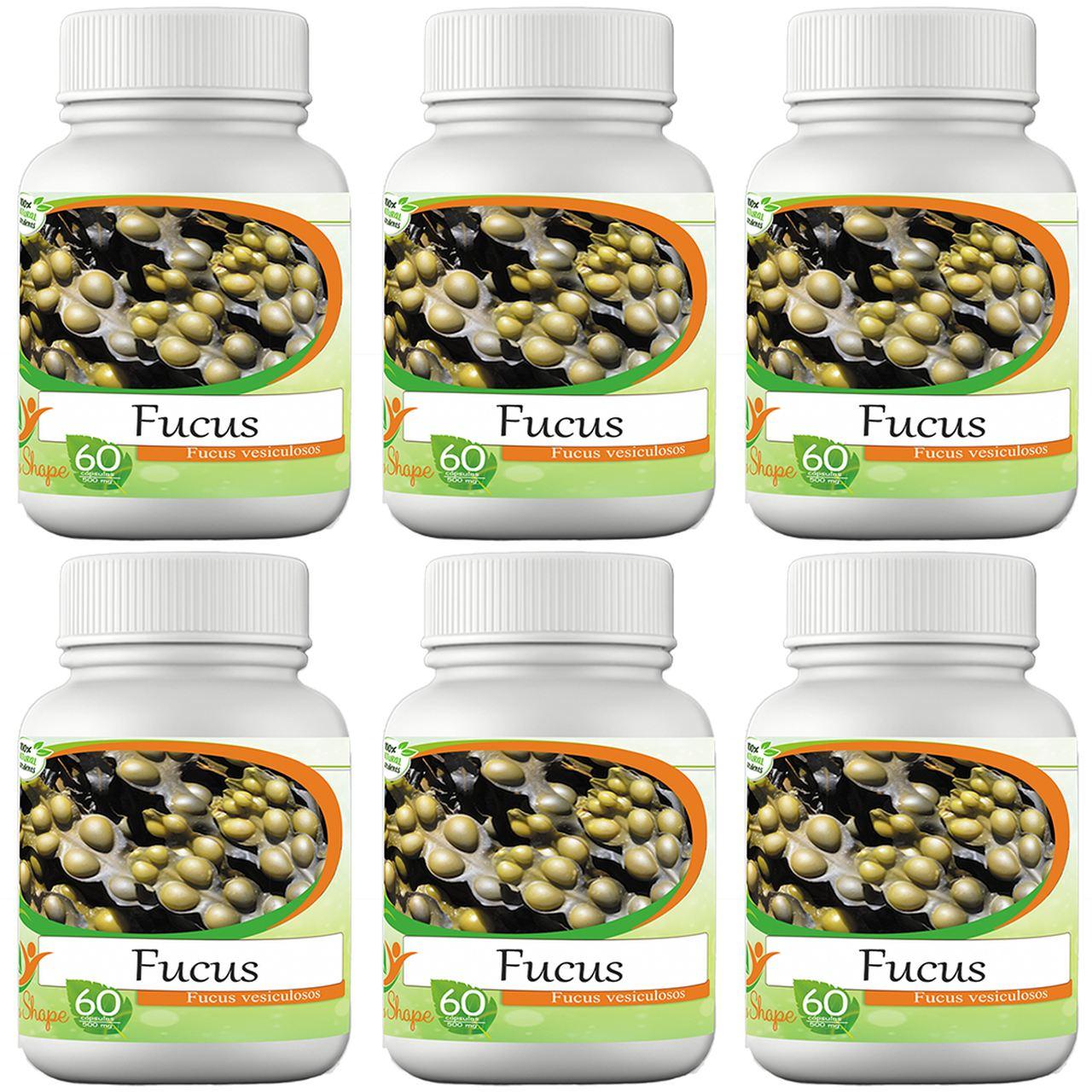6 frascos de Fucus 60 cápsulas cada frasco