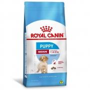 Royal Medium Puppy
