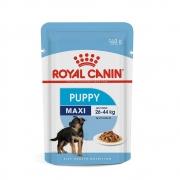 Royal Sachê Maxi Puppy 140g