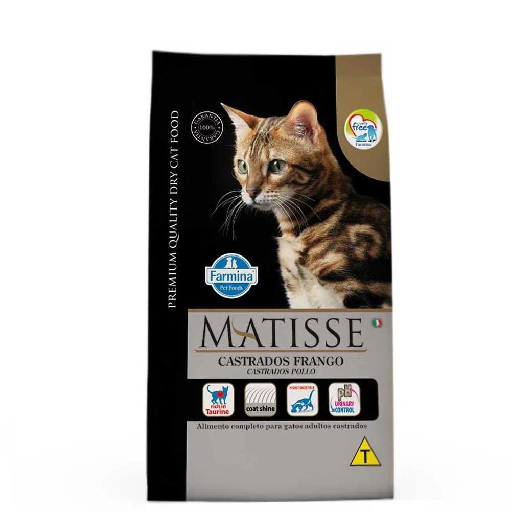 Matisse Gatos Castrados