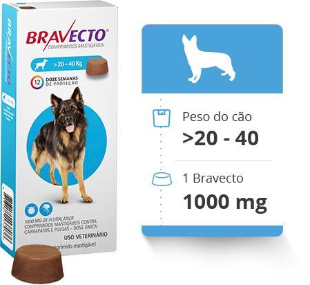 Msd Bravecto Cães
