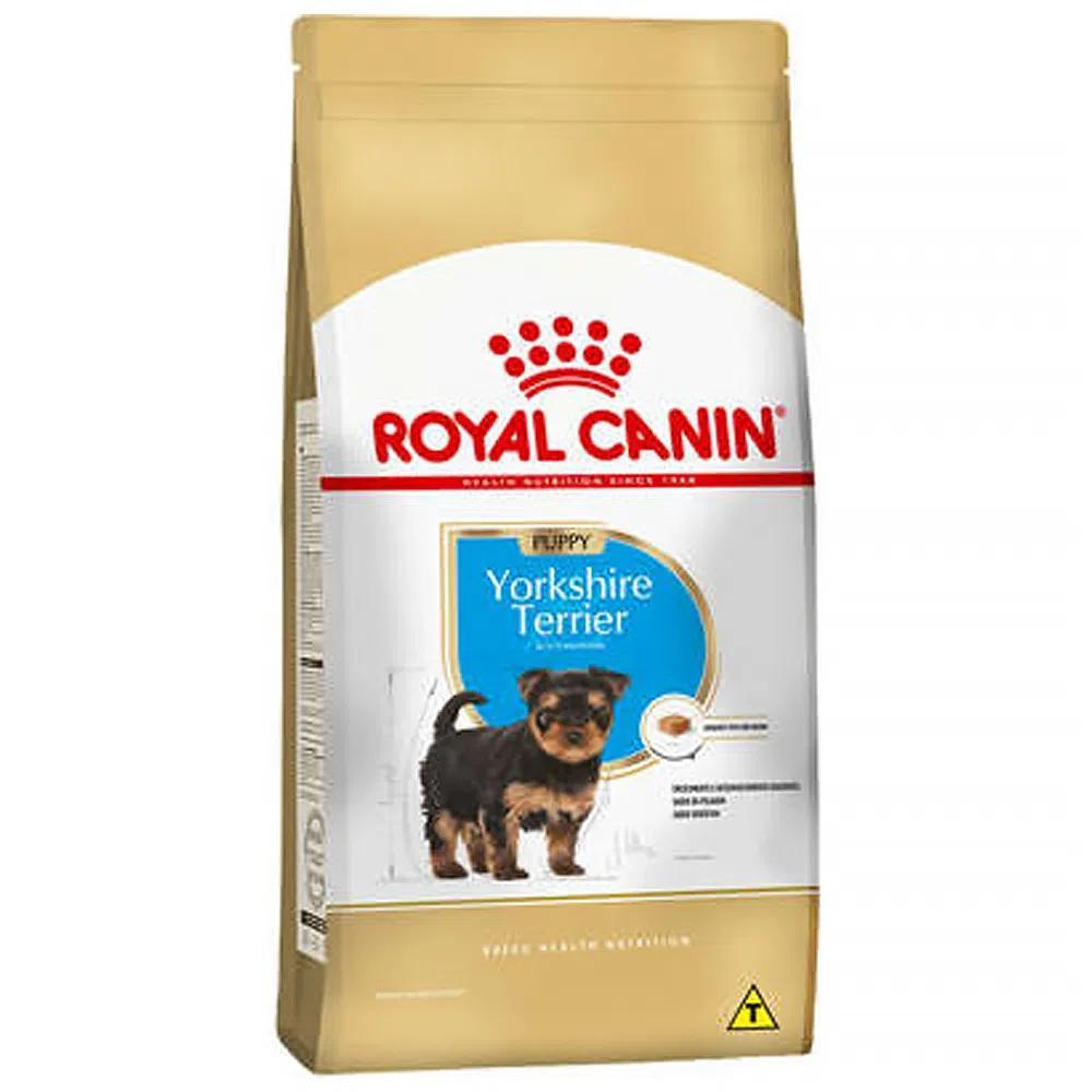 Royal Yorkshire Puppy