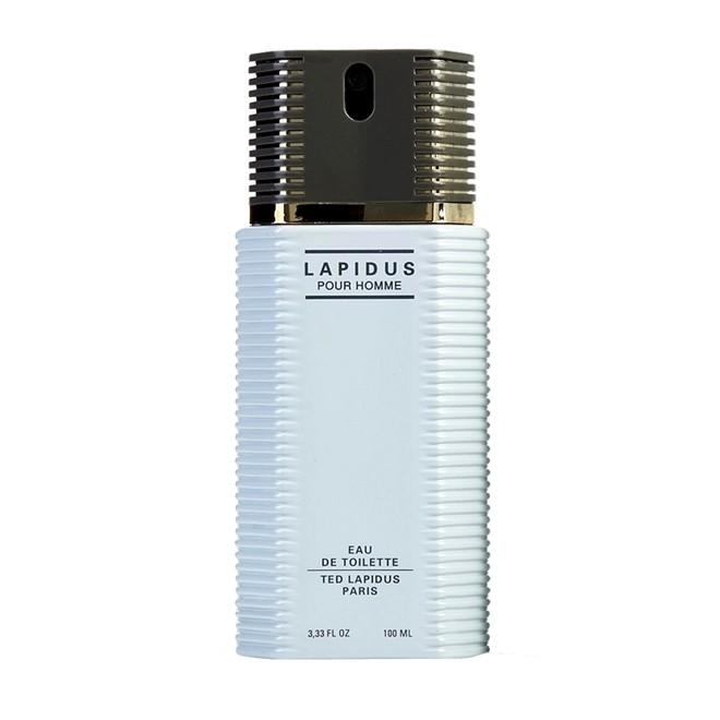 Perfume Ted Lapidus Masculino 100ml Eau de Toilette TED