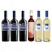 Kit Varietal- 2x Malbec / 1x Cabernet / 1x Matilda Rosé / 2x Sauvignon Blanc