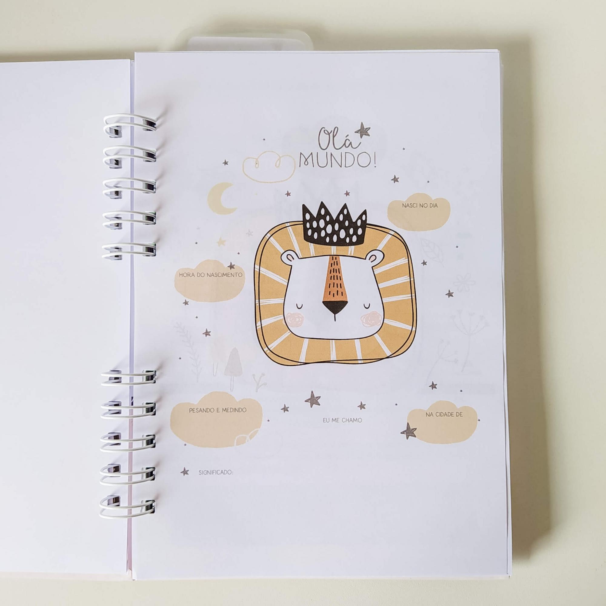 Caderneta de saúde - Menina Coleção 2.0