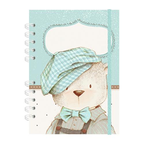 Caderneta de saúde - Menino Coleção 2.0