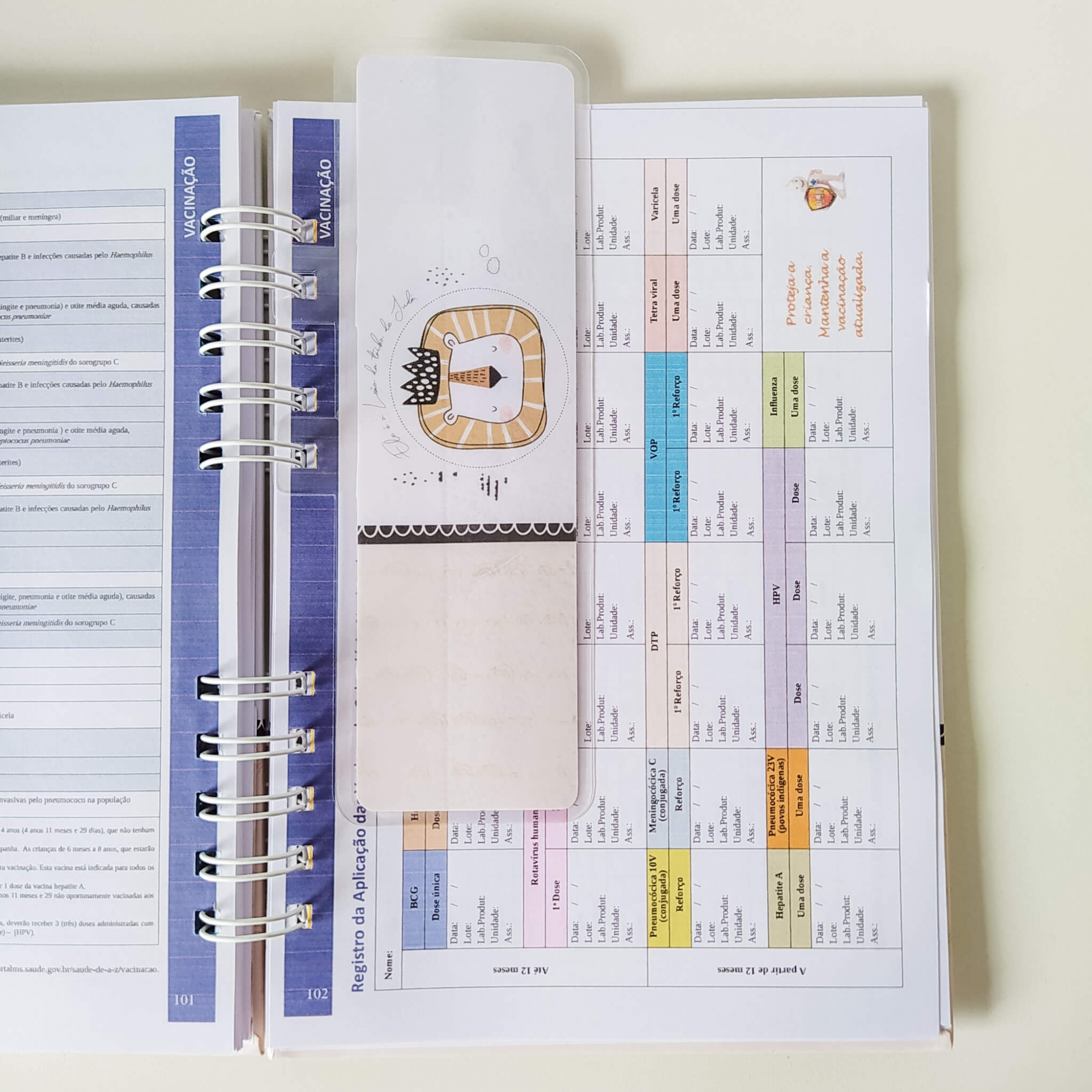 Caderneta de saúde - Menina Coleção 1.0