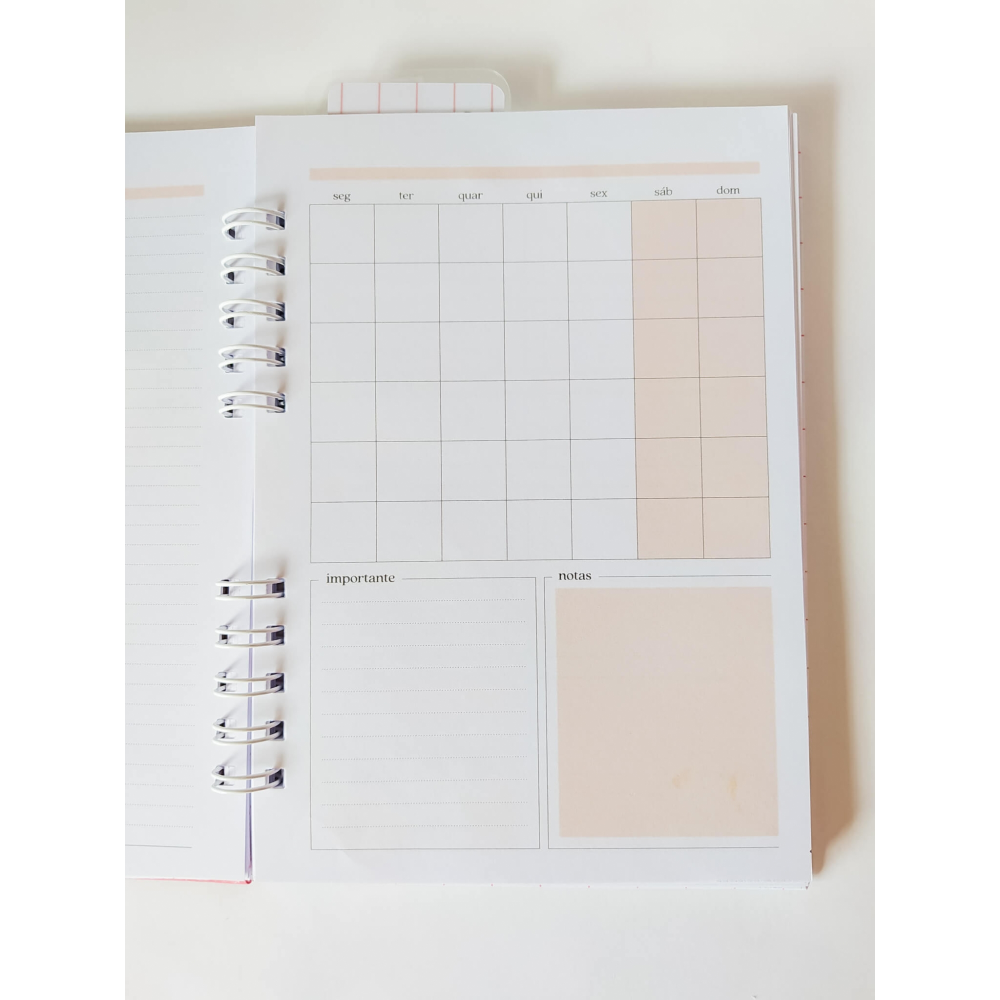 Planner permanente simples - coleção Azul e Rosa
