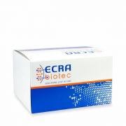 Kit de Extração de Ácidos Nucleicos ECRA MAG+ (250 extrações)