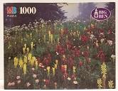 Quebra-Cabeça 1000 peças - Milton Bradley - Mount Rainer