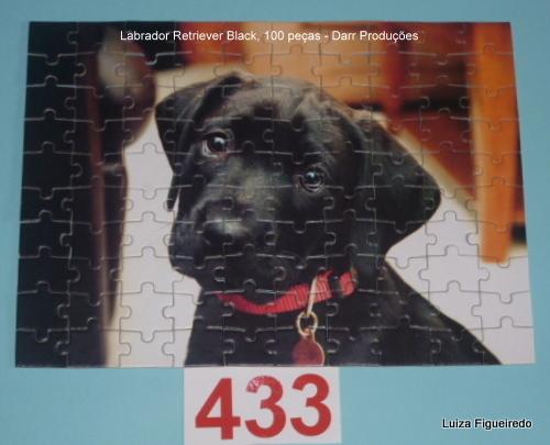 Quebra-Cabeça 100 peças - Pets, Labrador Retriever Black