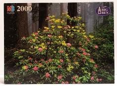 Quebra-Cabeças 2000 peças - Milton Bradley - Redwoods State Park