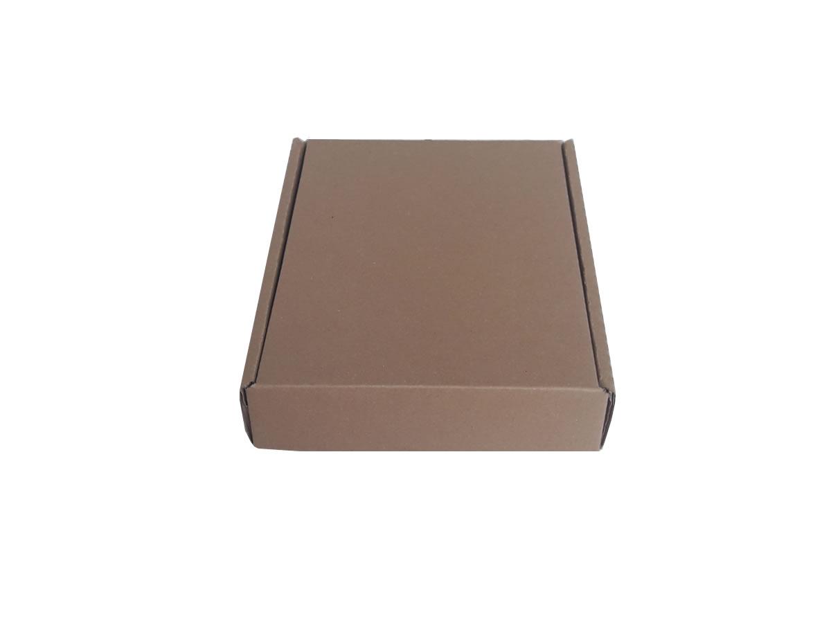 Lote de Caixas de Papelão 21x28x5 cm