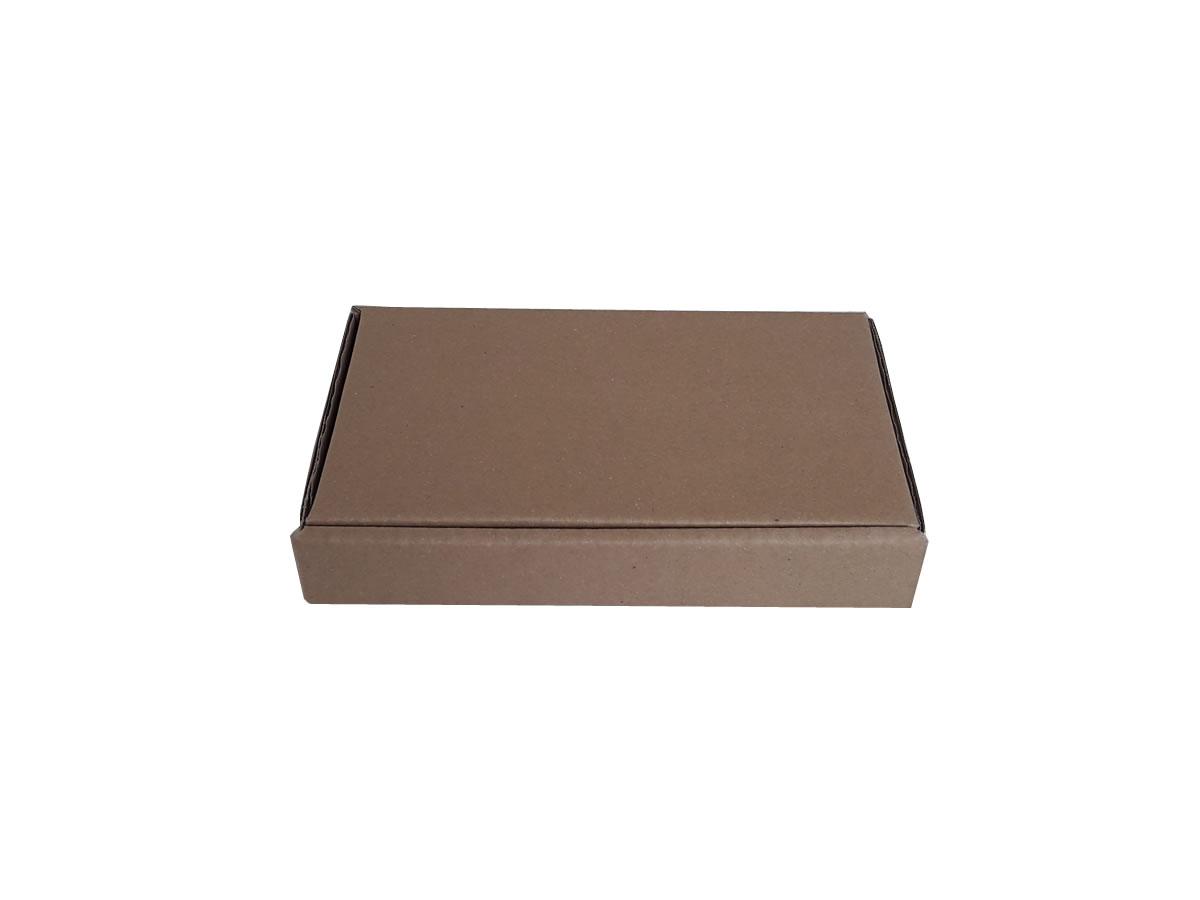 Lote de Caixas de Papelão 24x14x4 cm