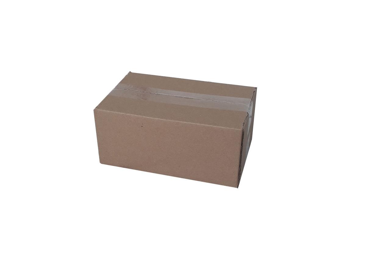 Lote de Caixas de Papelão 24x15x10 cm