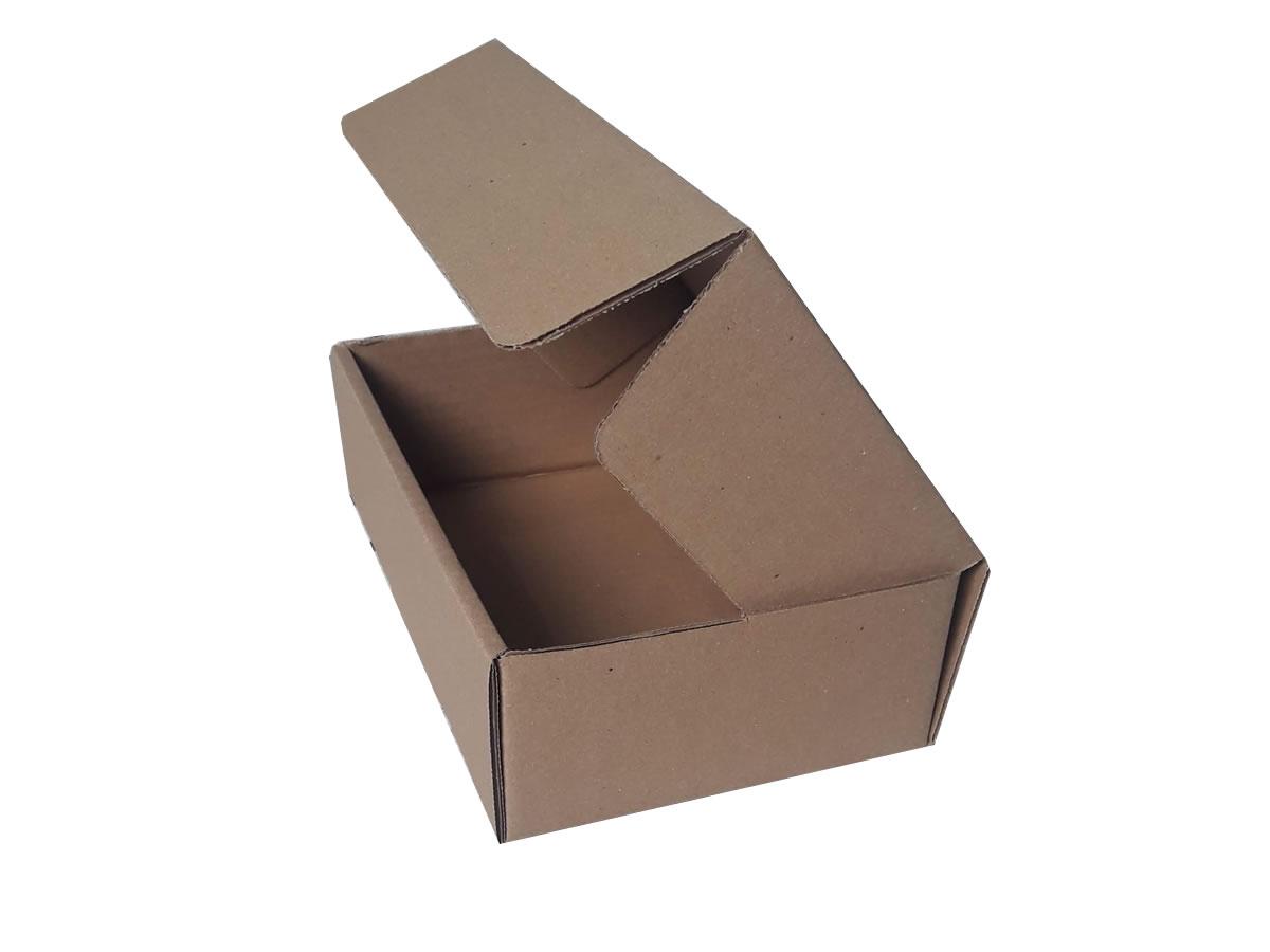 Lote de Caixas de Papelão 24x15x7 cm