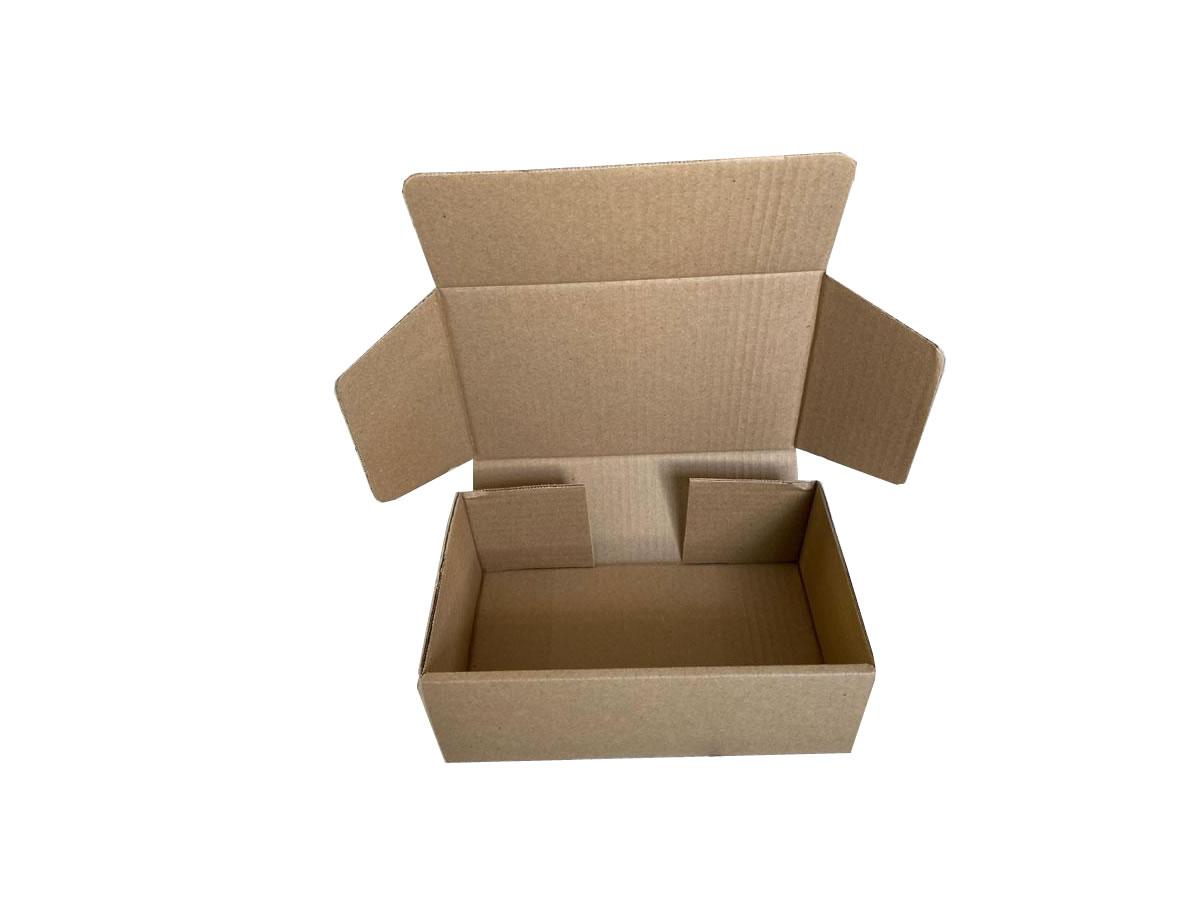 Lote de Caixas de Papelão 24x15x8,5 cm