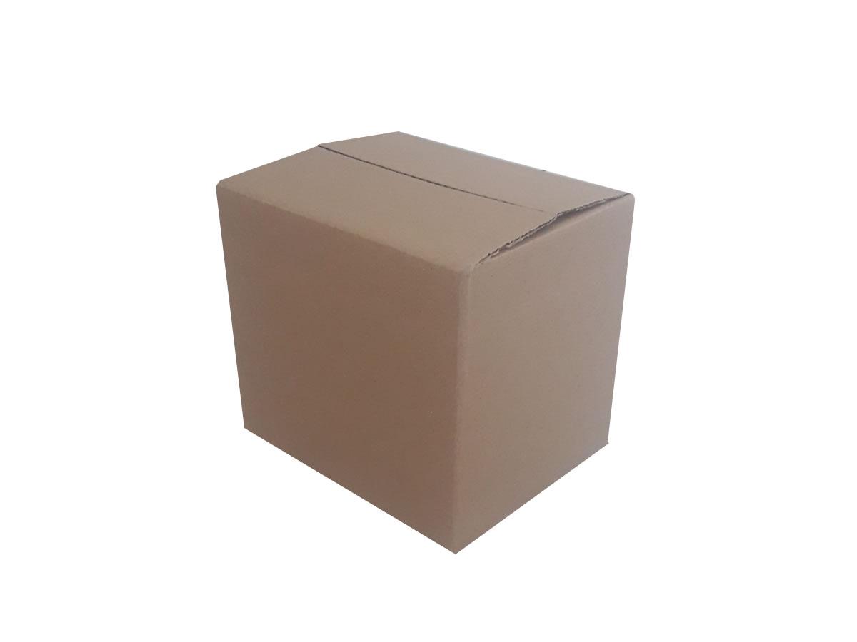 Lote de Caixas de Papelão 24x19x21 cm