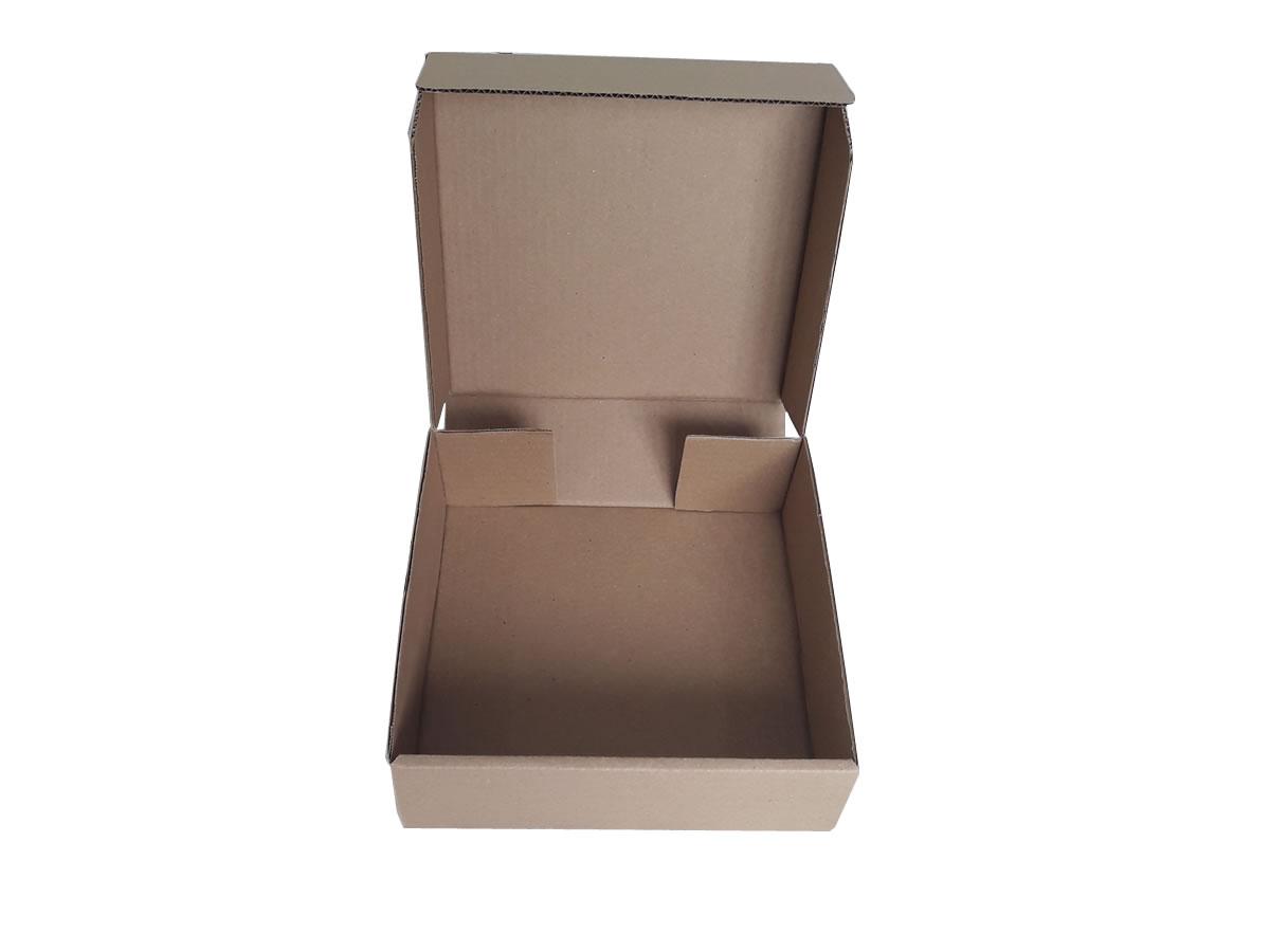 Lote de Caixas de Papelão 25x25x8 cm